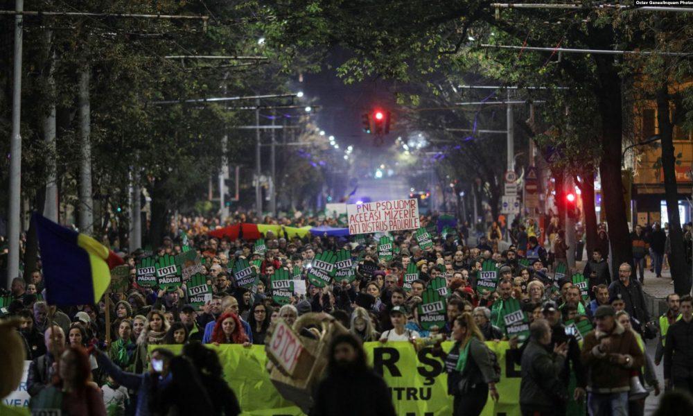 Румънците на протест срещу незаконната сеч, нападения върху горски служители