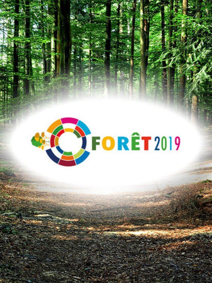 Forêt2019 – съвместно заседание